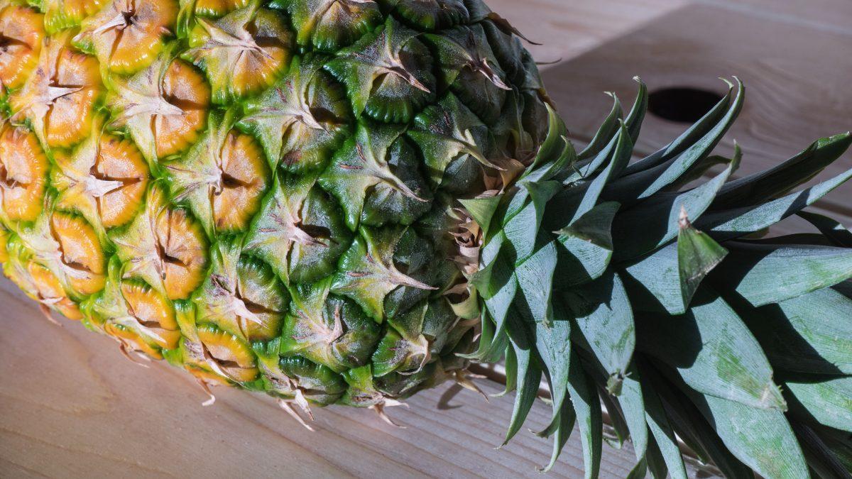 casca de abacaxi
